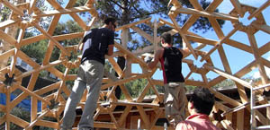 building a wooden geodesic structure